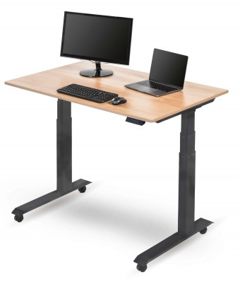 "48"" Electric Standing Desk"